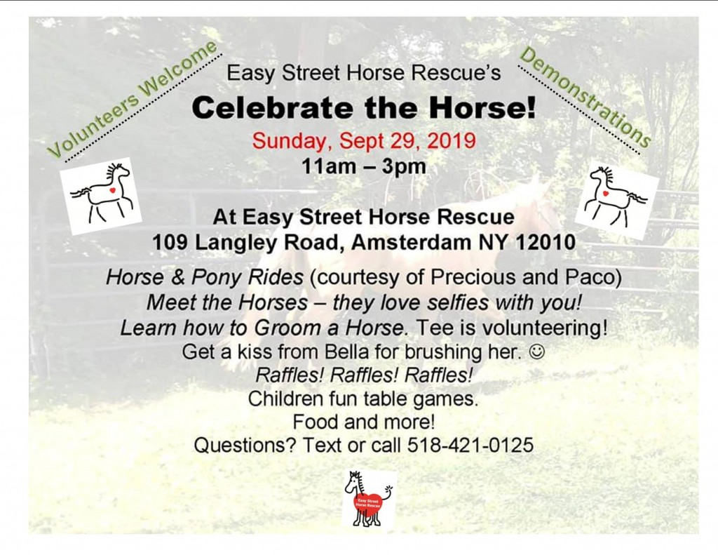 celebrate the horse 2